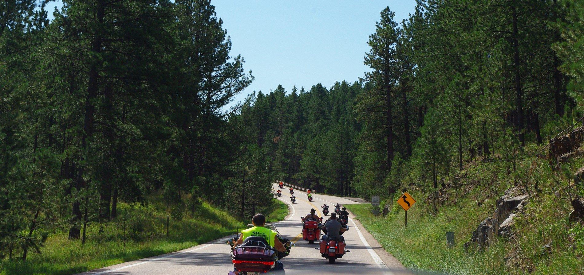 Hog Heaven Campground | Sturgis South Dakota